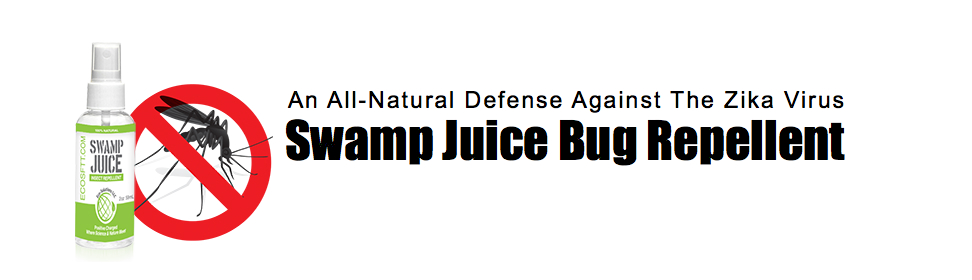 swamp juice brothers carpet cleaning more